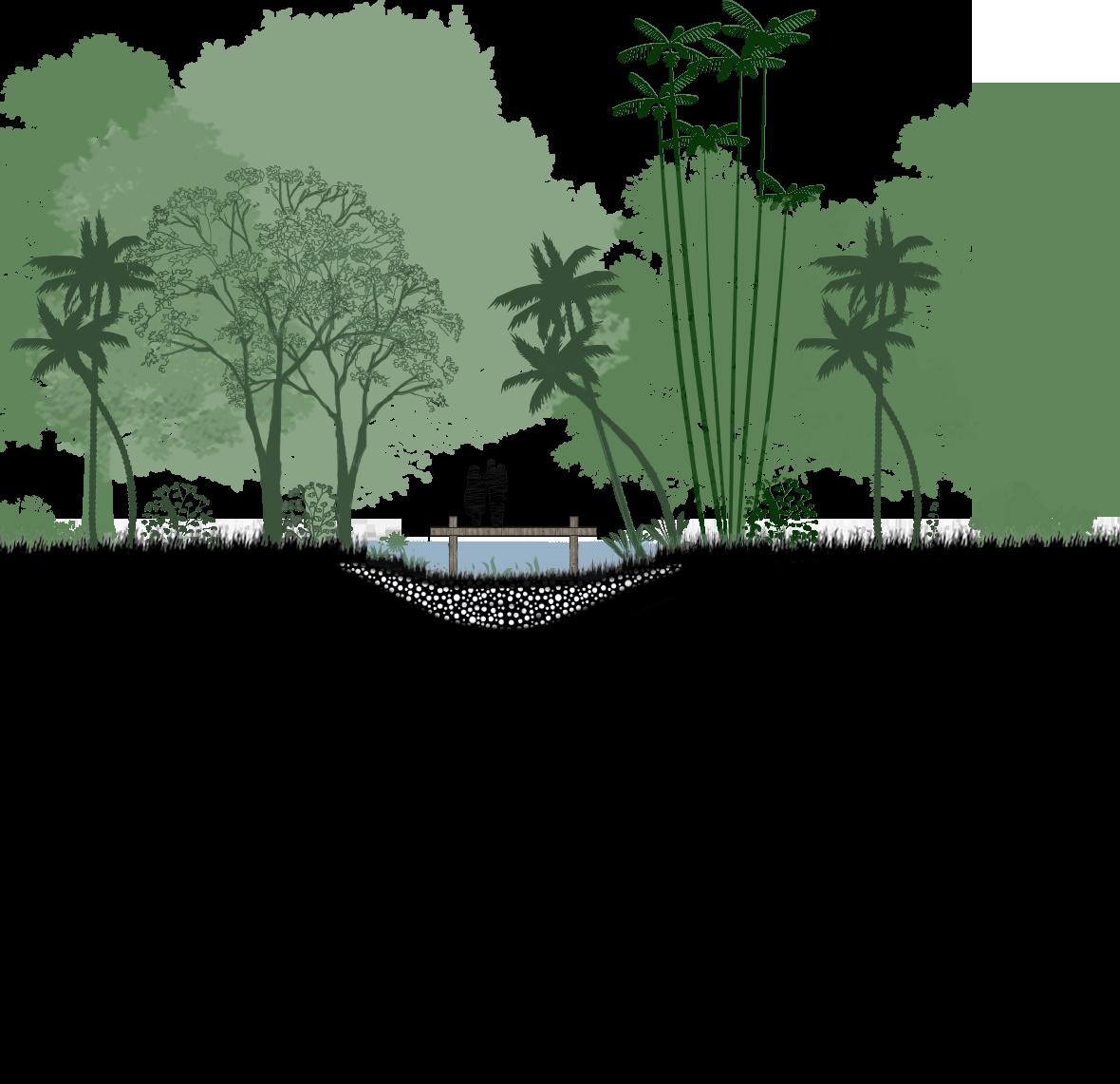 Maharashtra Nature Park →