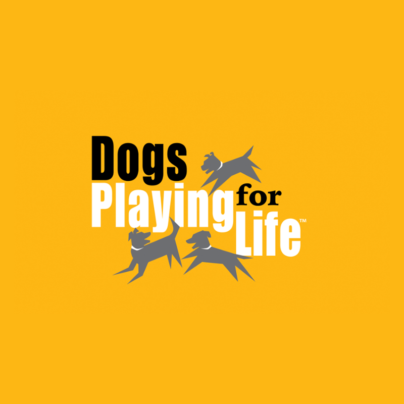dogs-playing-for-life.png