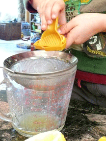 Lemon Squeezer for little hands