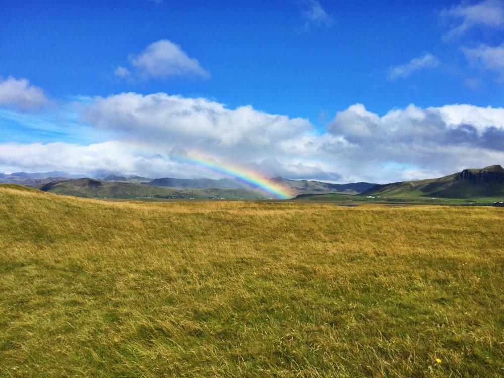 Iceland field