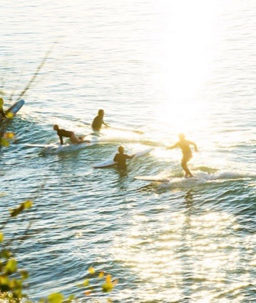 Noosa EVENTS - From world-class events including the Noosa Triathlon to the deliciously decadent Noosa Food & Wine Festival, Noosa boasts a diverse social and event calendar that is sure to keep you busy!