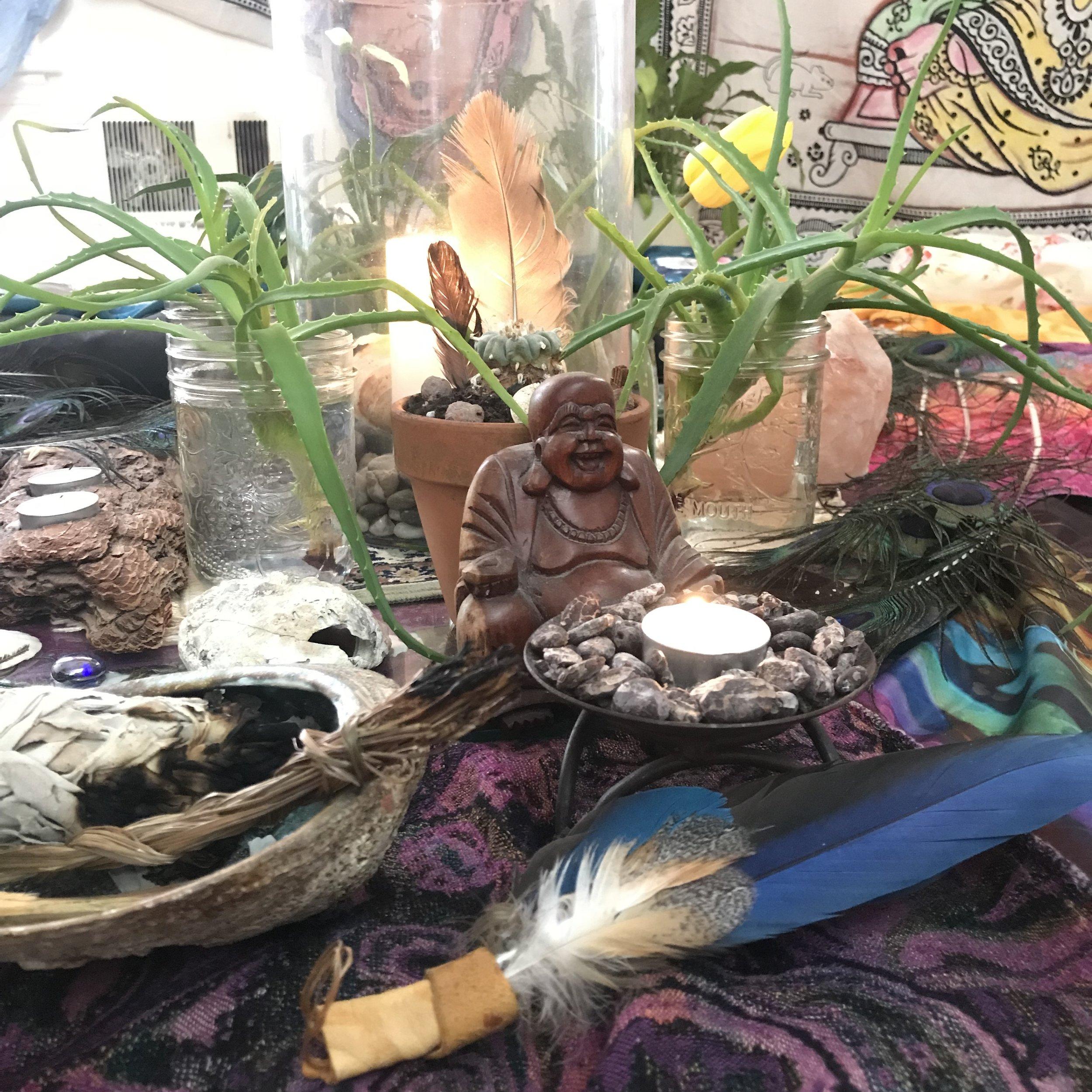 cacao buddha macaw.jpg