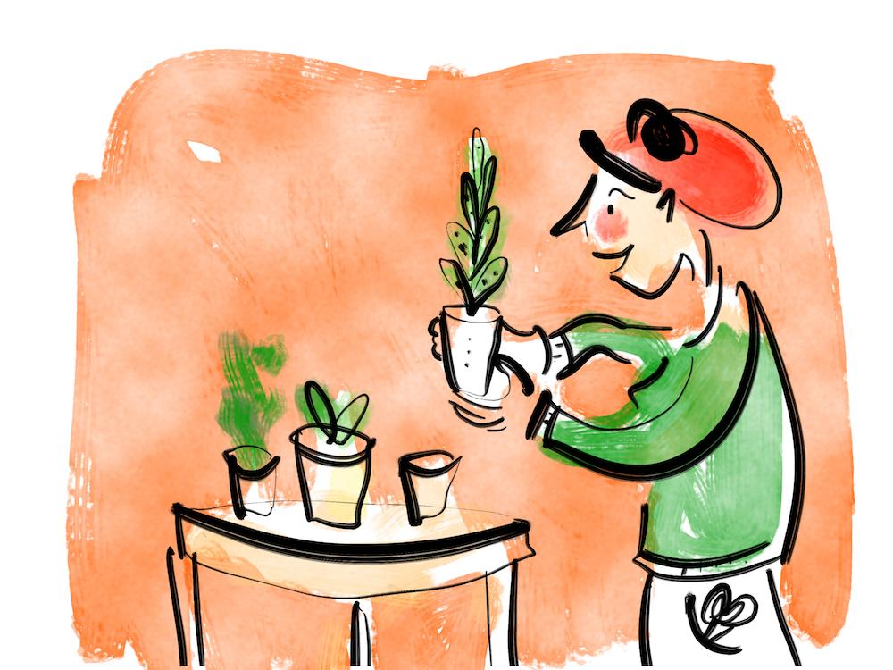 Glueck pflanzen.JPG