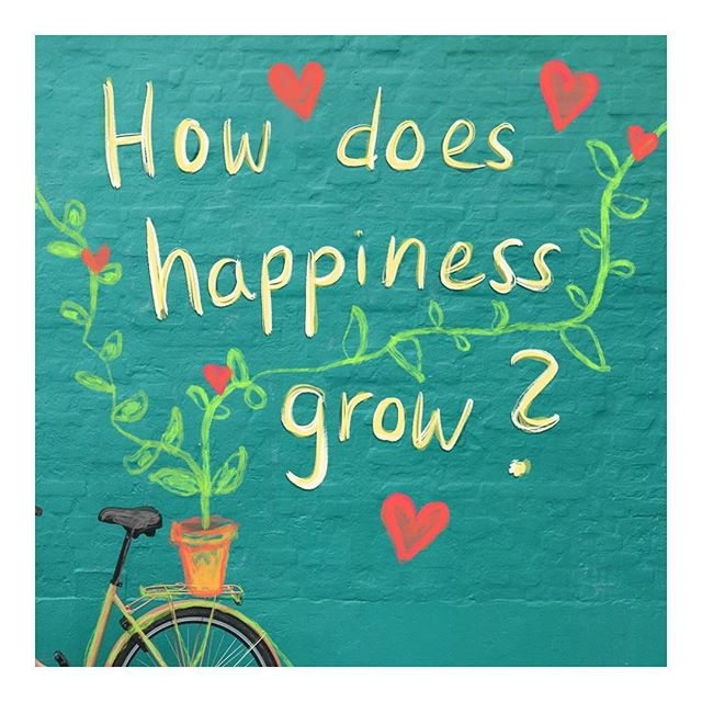 How can we bring more happiness into the world? This week I again experienced how much happiness grows from connection. Friday I was at a meetup where we started with extremely different viewpoints but through intense discussion found ways to interact and work together. At the urban gardening this weekend I watched in wonder how so many different people met in the garden, some for work, some just to relax or meet, have a drink or enjoy the spring sun. Happiness grows from people who are open to learn and connect ❤️ Background image from Christian Stahl via Unsplash  #happiness #quote #question #bicycle #connection #frage #mindfulness #glück #plantsmakepeoplehappy