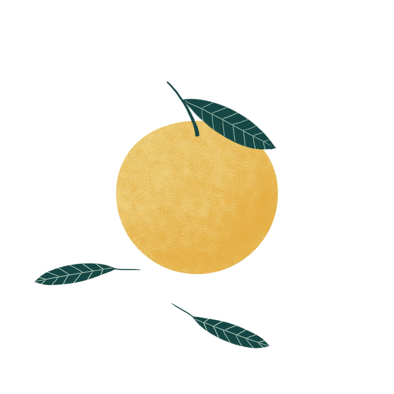 Fruits_Naranja.jpg