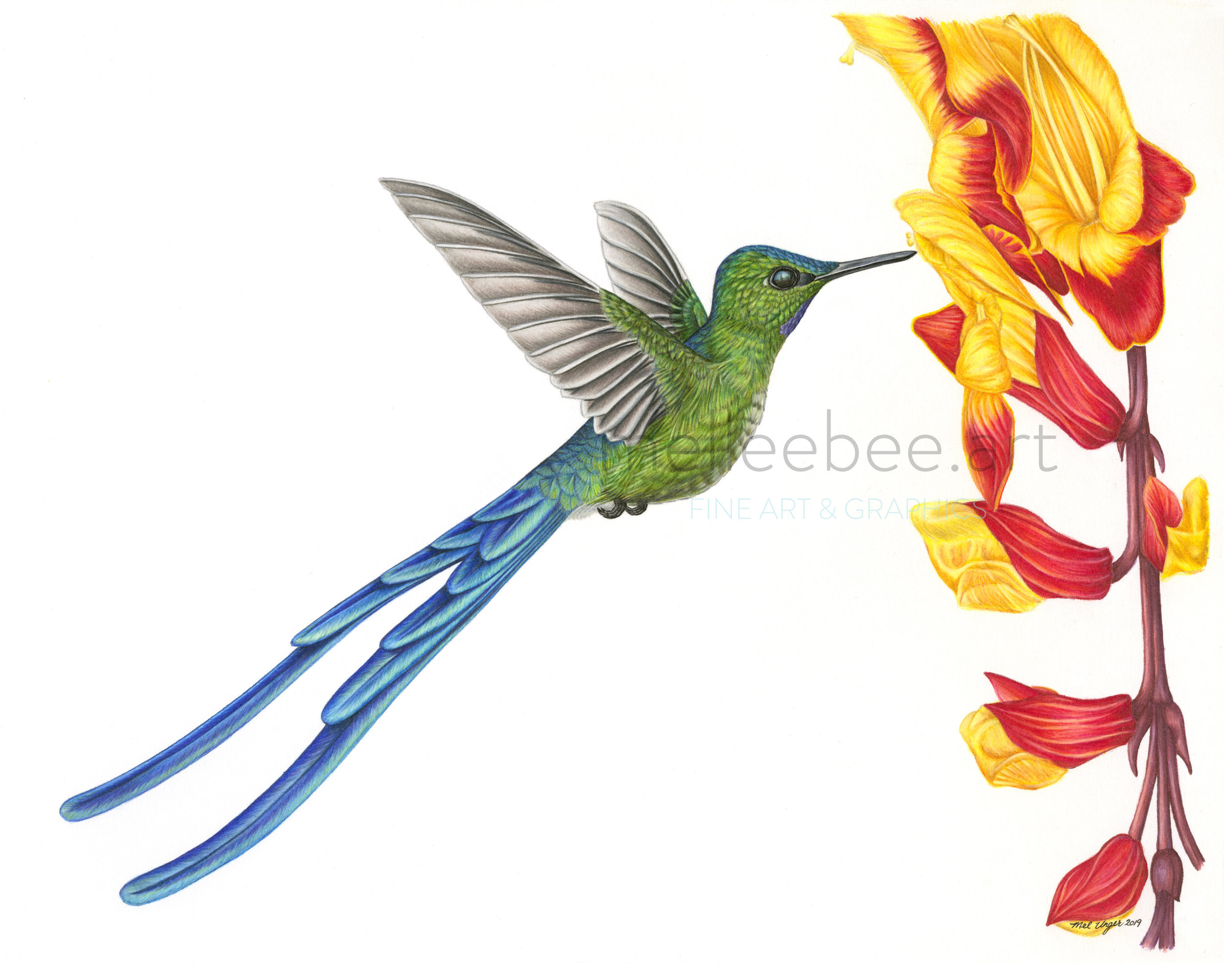 """Long-Tailed Sylph"". This illustration has been SOLD. Please contact me for commissions if you are interested in custom art. Thank you! (   Click here    to read more about this story)."