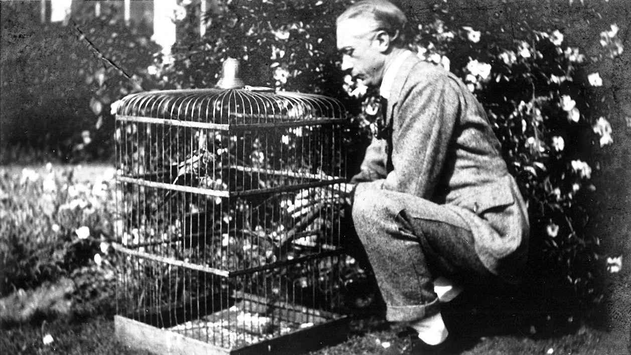 FM Alexander squatting beside a birdcage FM248jpg.JPG