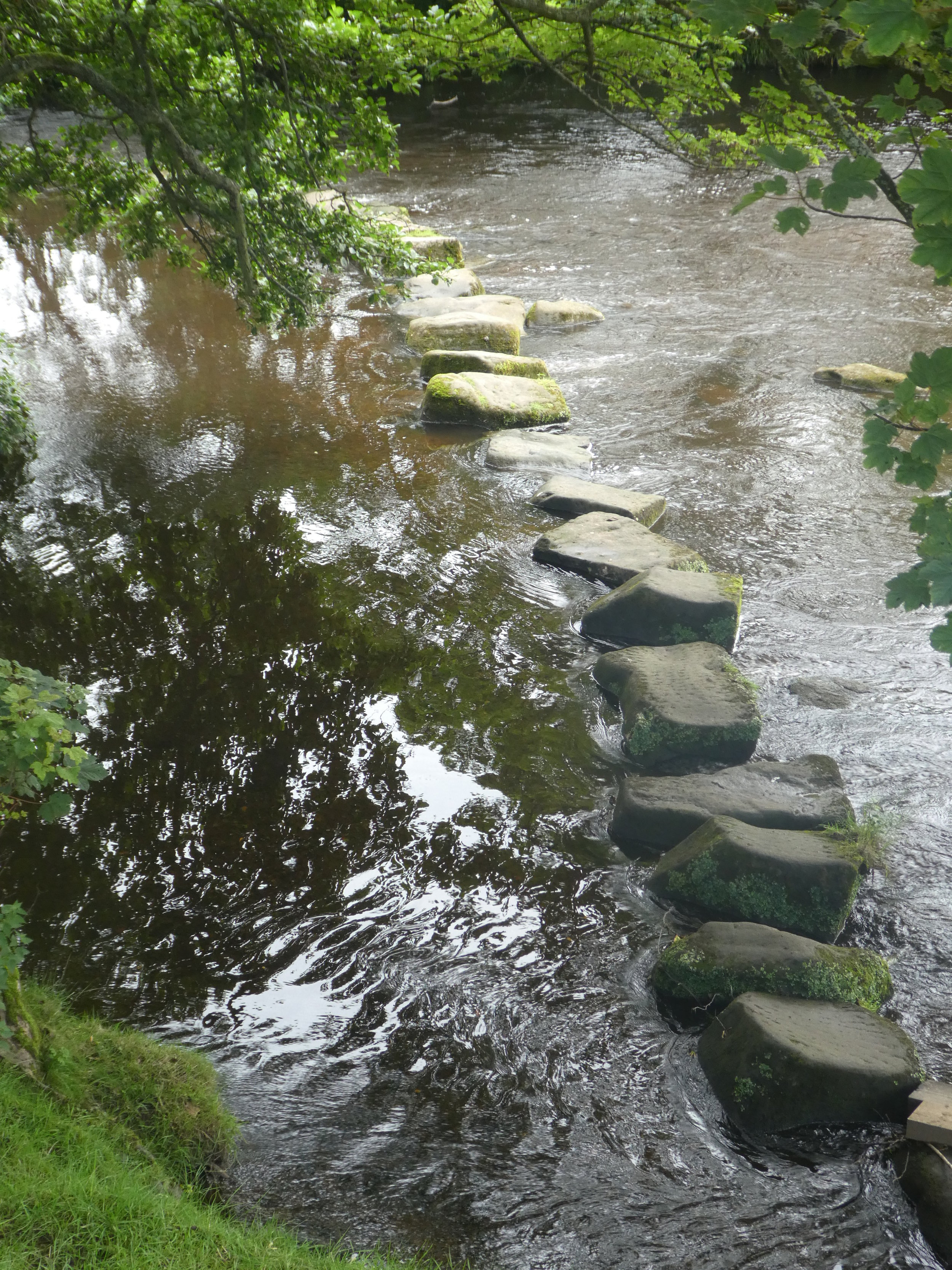 Stepping+stones.jpg
