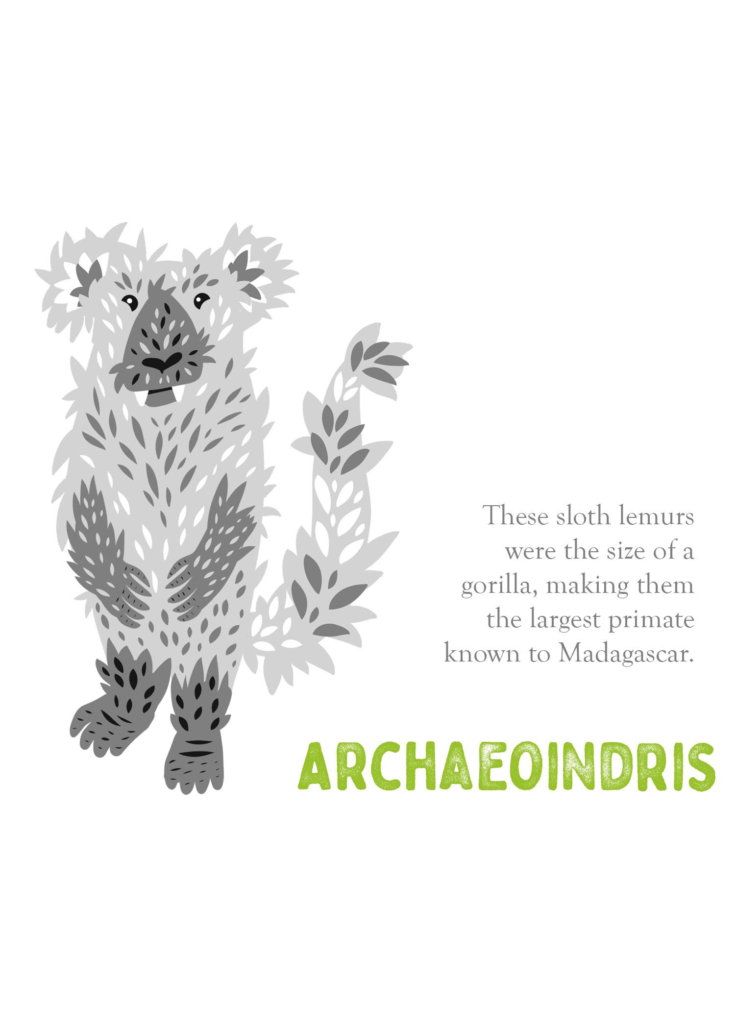 enml-archaeoindris.jpg