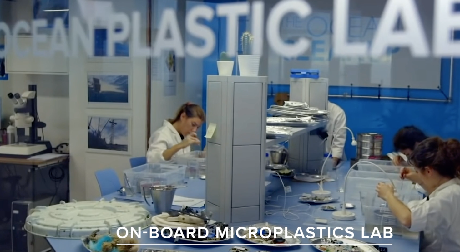 Plastic Analysis - Engage in scientific research by analyzing plastic discovered in the ecosystem via a state-of-the-art micro and macro plastics lab.