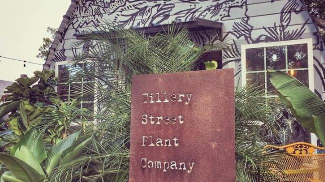 tillerystreetplant.jpg