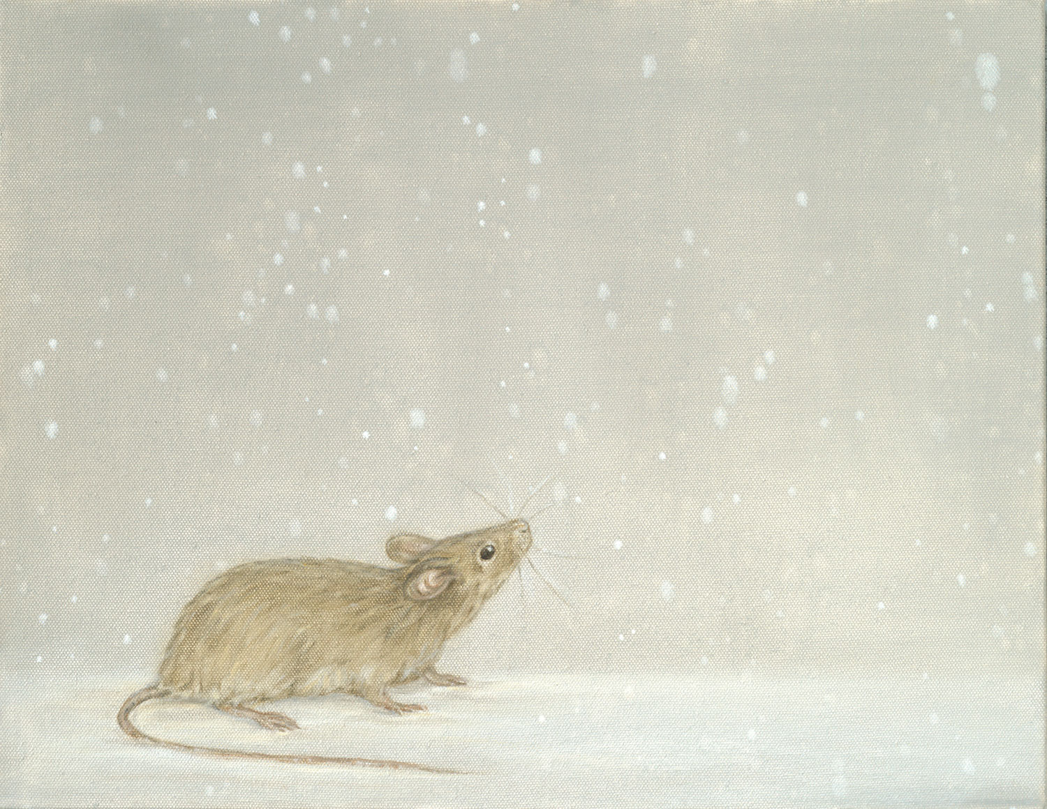 Mouse and Snow