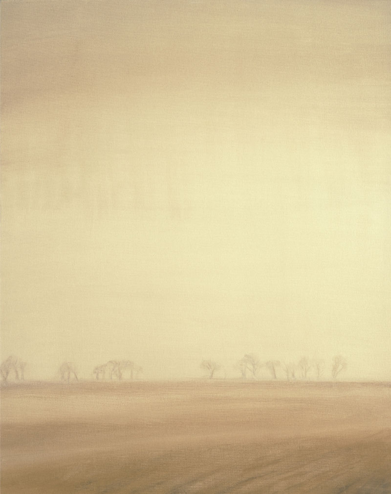 Mist Over Field