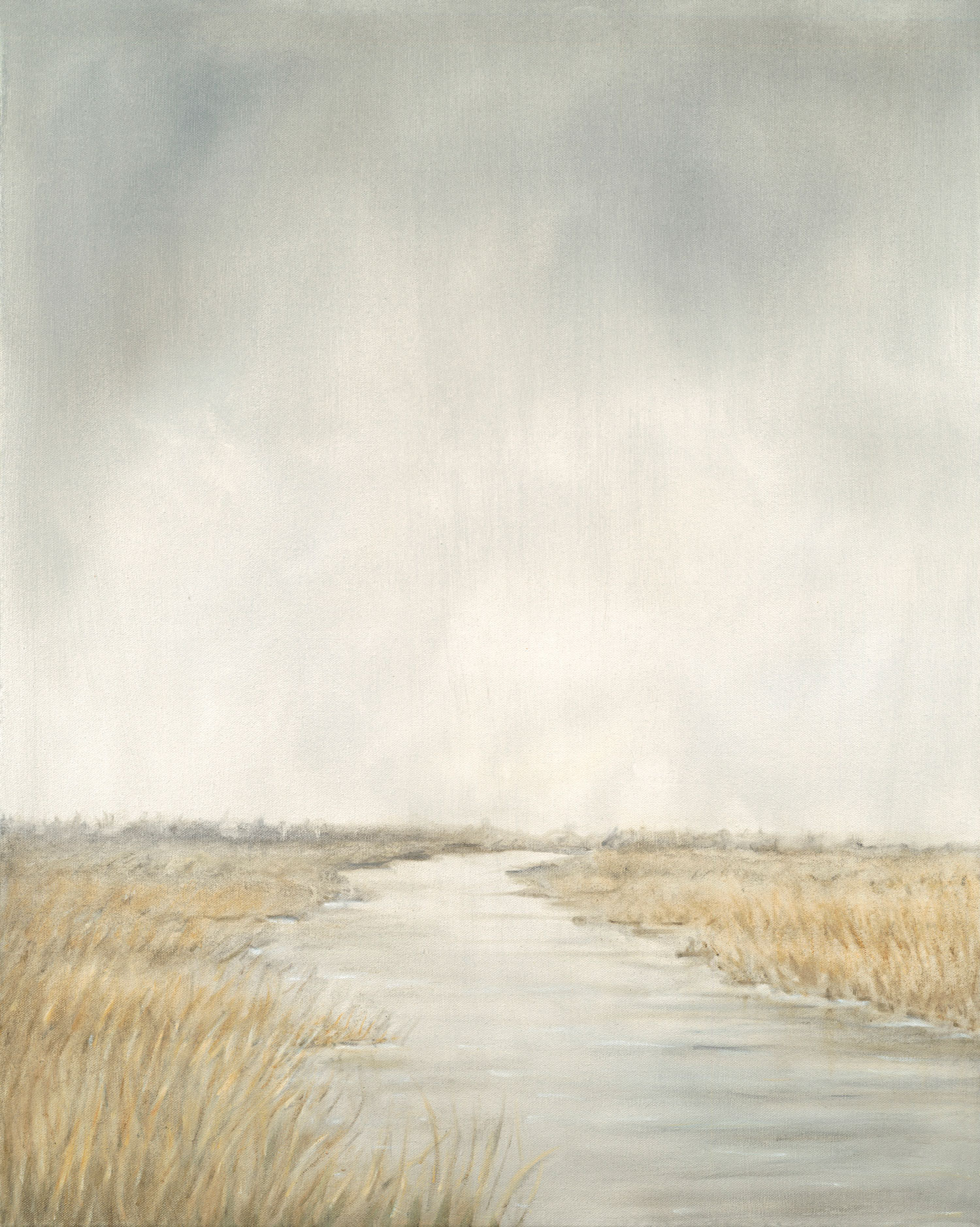 Reedbed and River