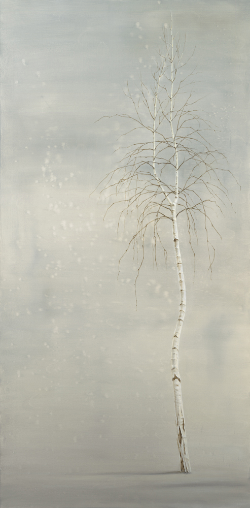 Single Birch