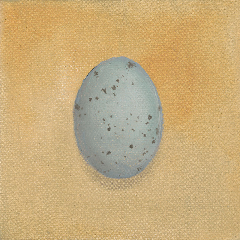 Jay Egg