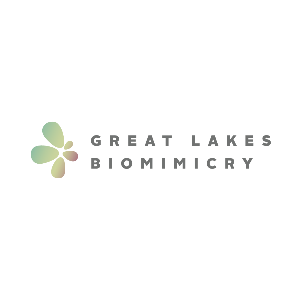 great-lakes-biomimicry_cwa-partner-logo.png