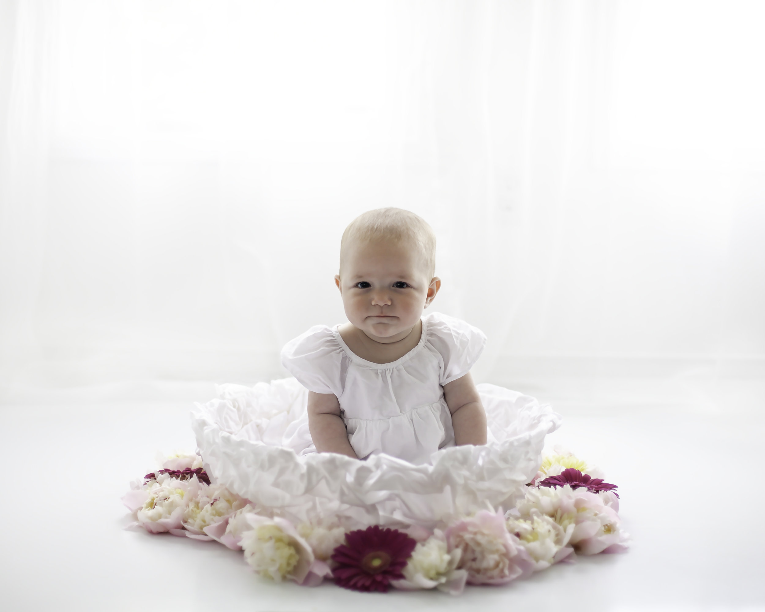 Six_Months_Fresh_Flowers_Session_Toronto_Baby_Photographer_Petra_King_Photography
