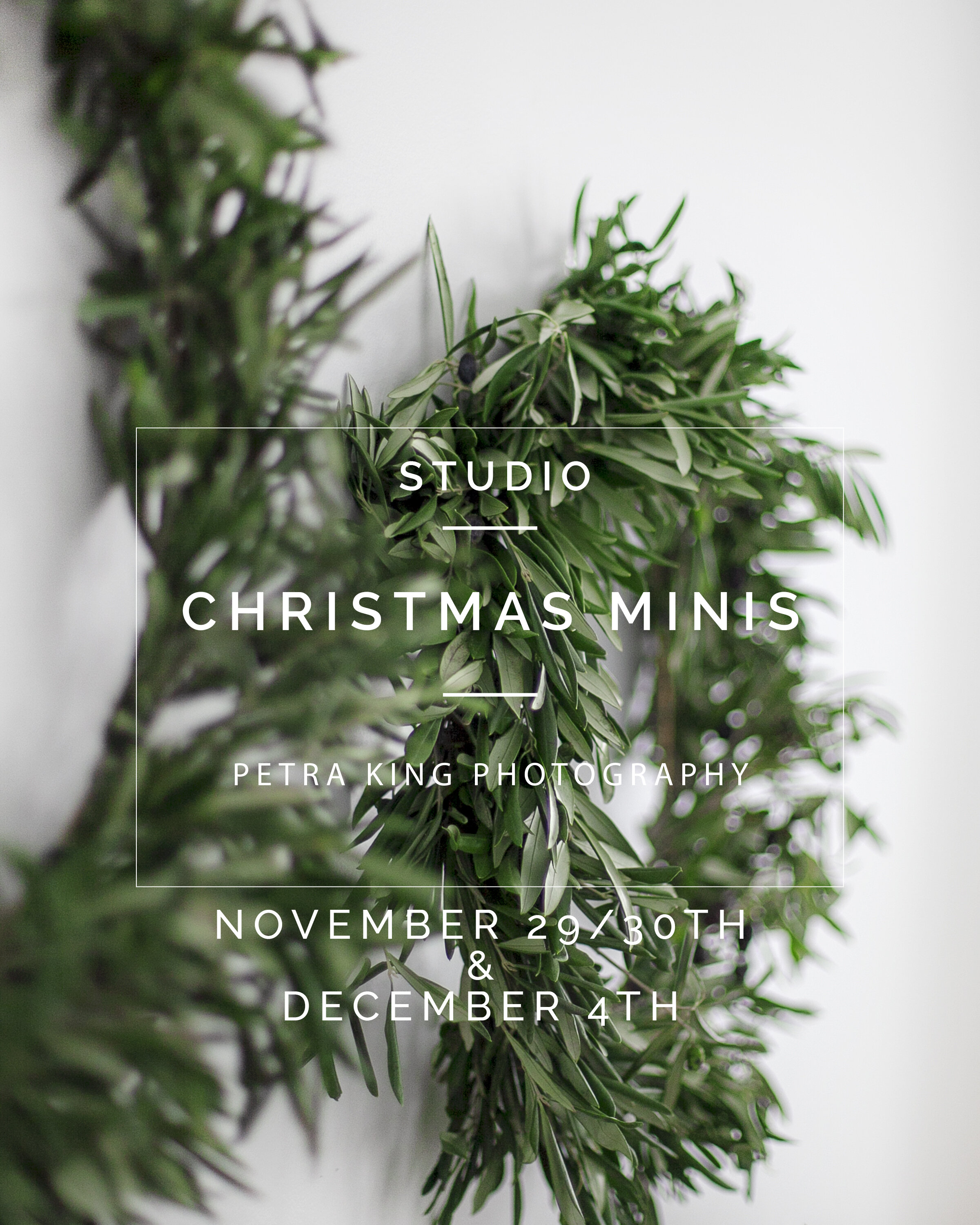 Oshawa_Whitby_Port Perry_Bowmanville_Christmas_Mini_Sessions_Petra_King_Photography