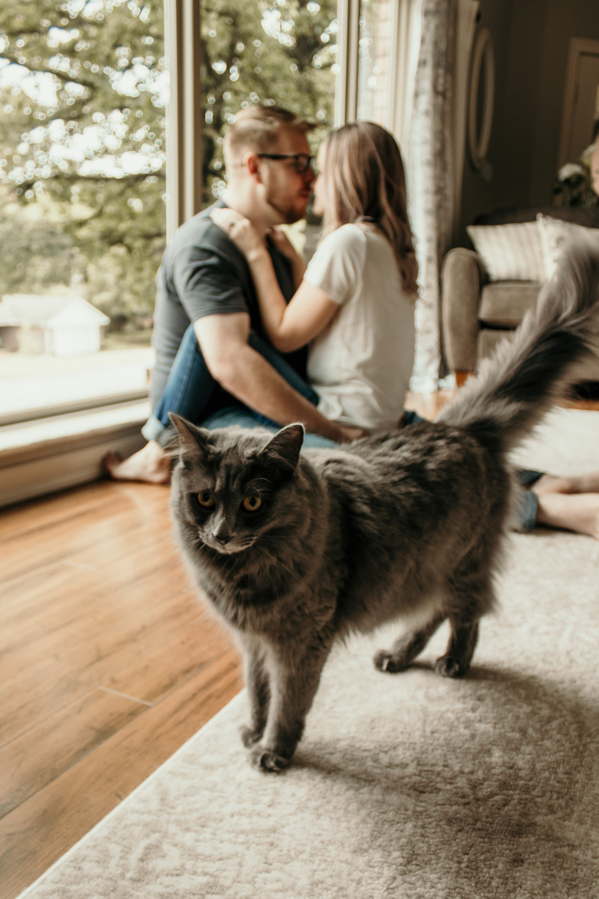 Couple and a cat