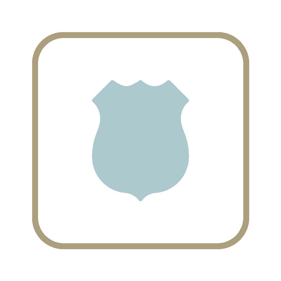 Law Enforcement - POLICE & DETECTIVE