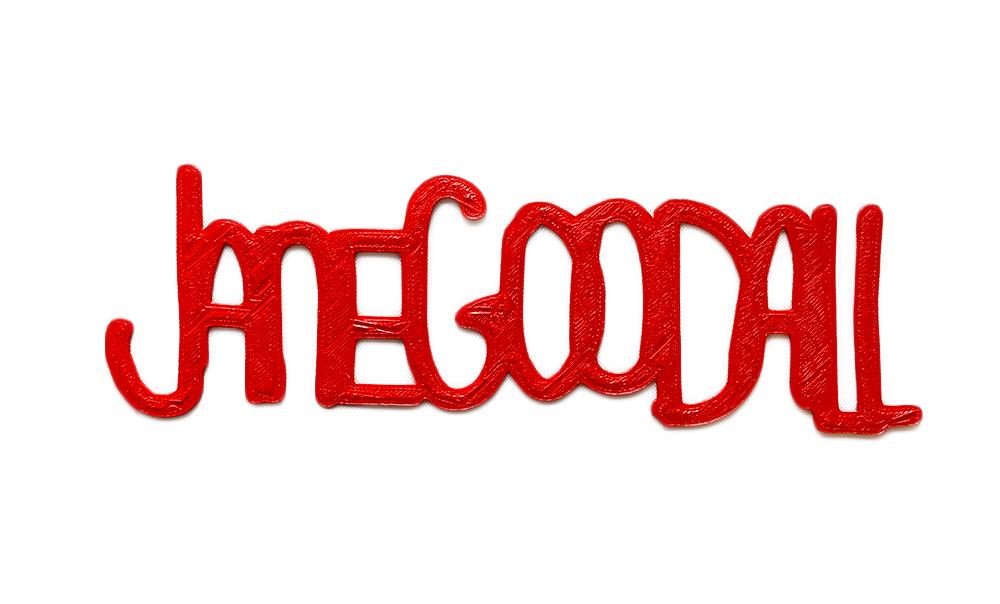 Jane-GoodallNoBackground.jpg