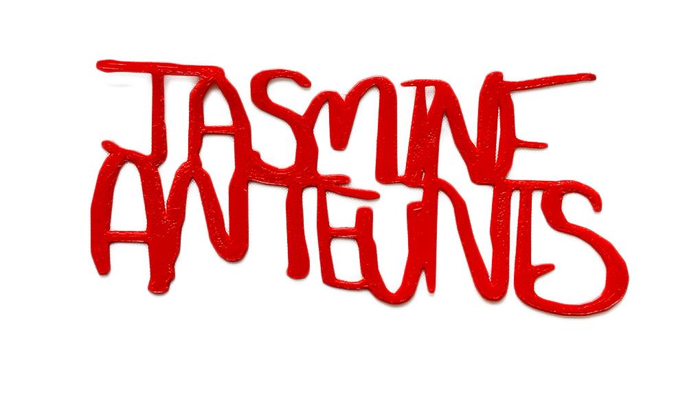 JasmineAnteunisNoBackground.jpg