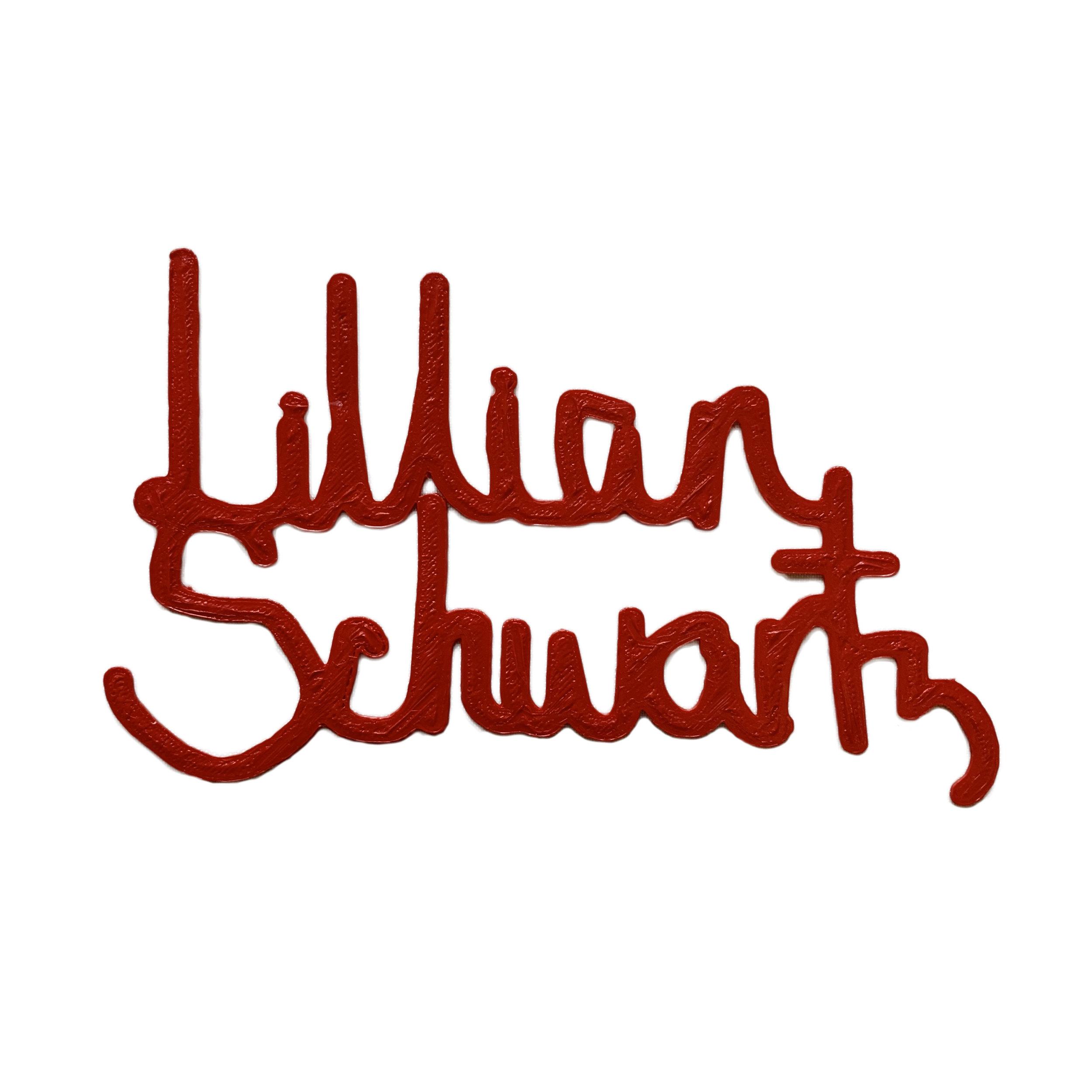 lilianSchwartzNoBackground.jpg