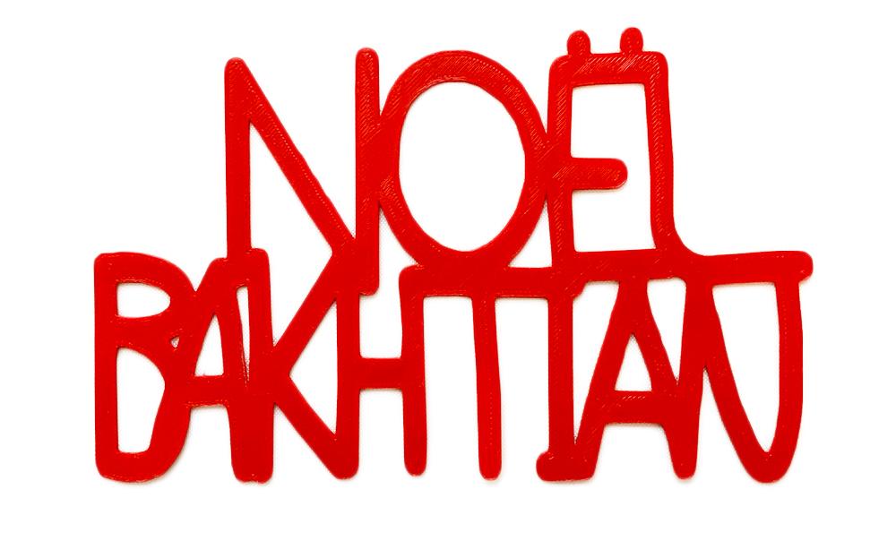 noelBakhtian-NoBackground.jpg