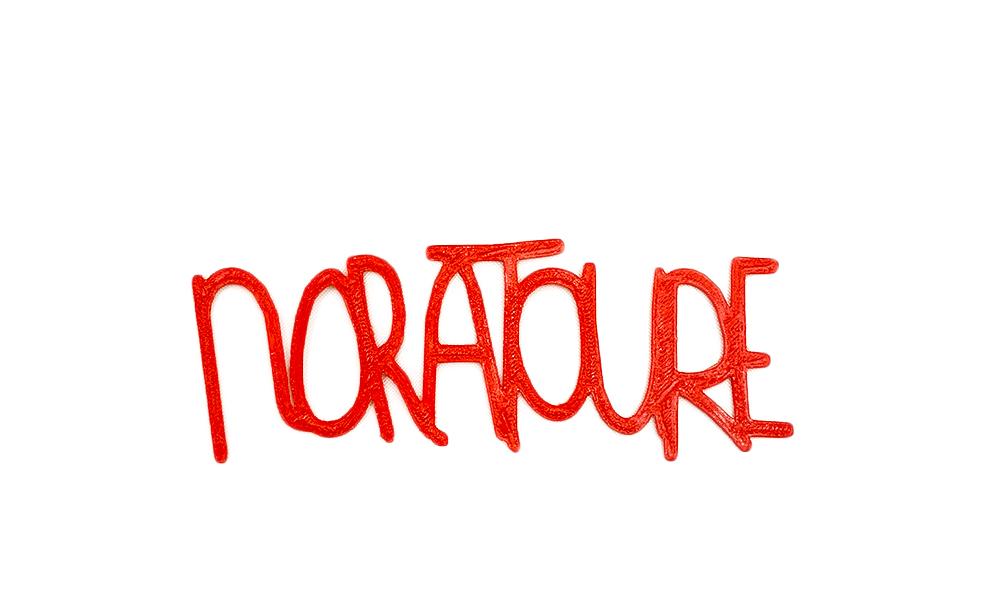 noraToureNoBackground.jpg