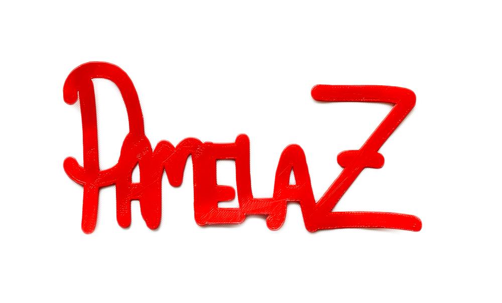 pamelaZNoBackground.jpg