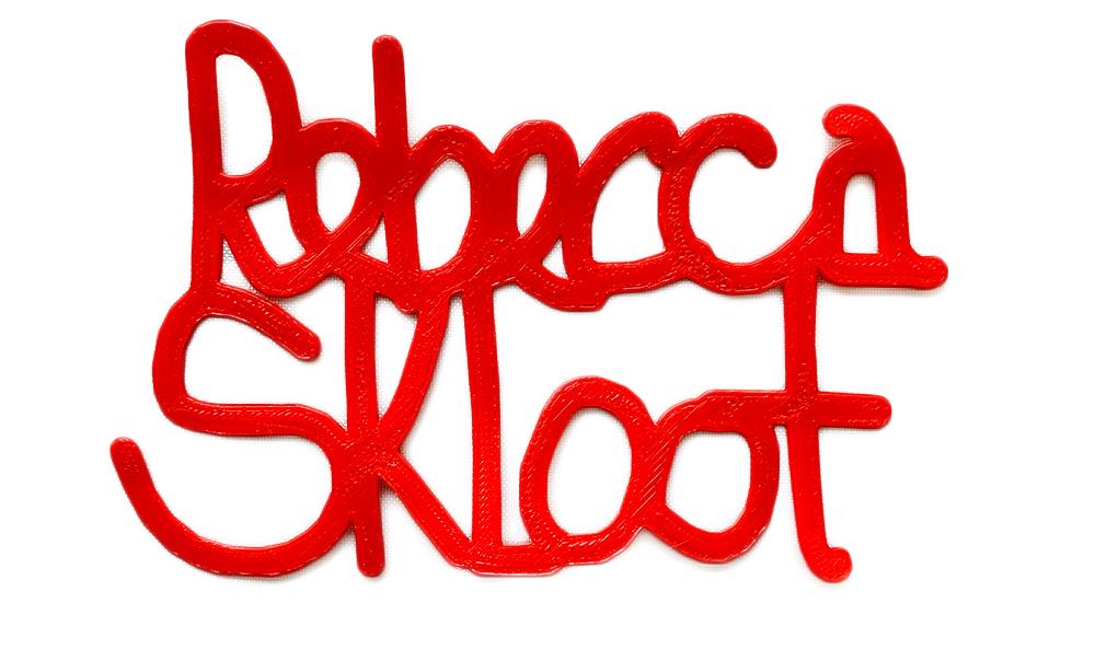 rebeccaSklootNoBackground.jpg