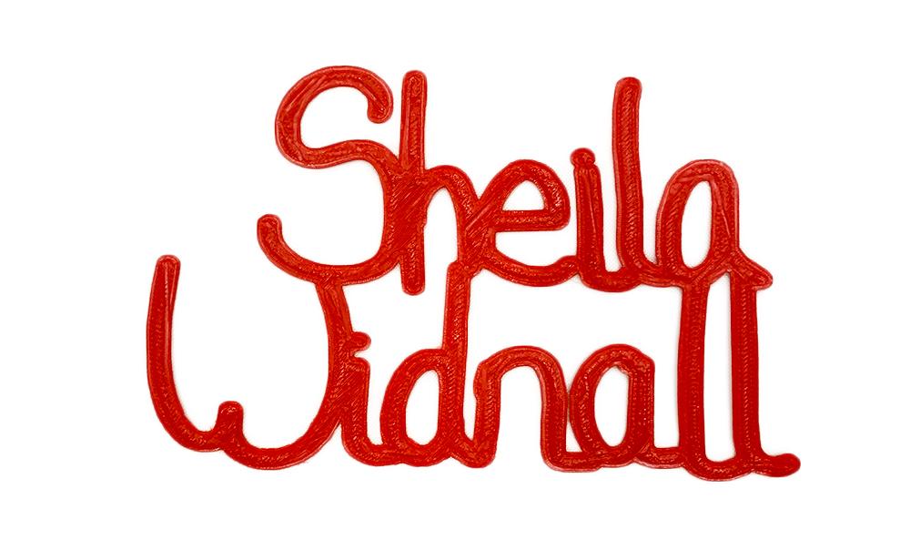 sheilaWidnallNoBackground.jpg
