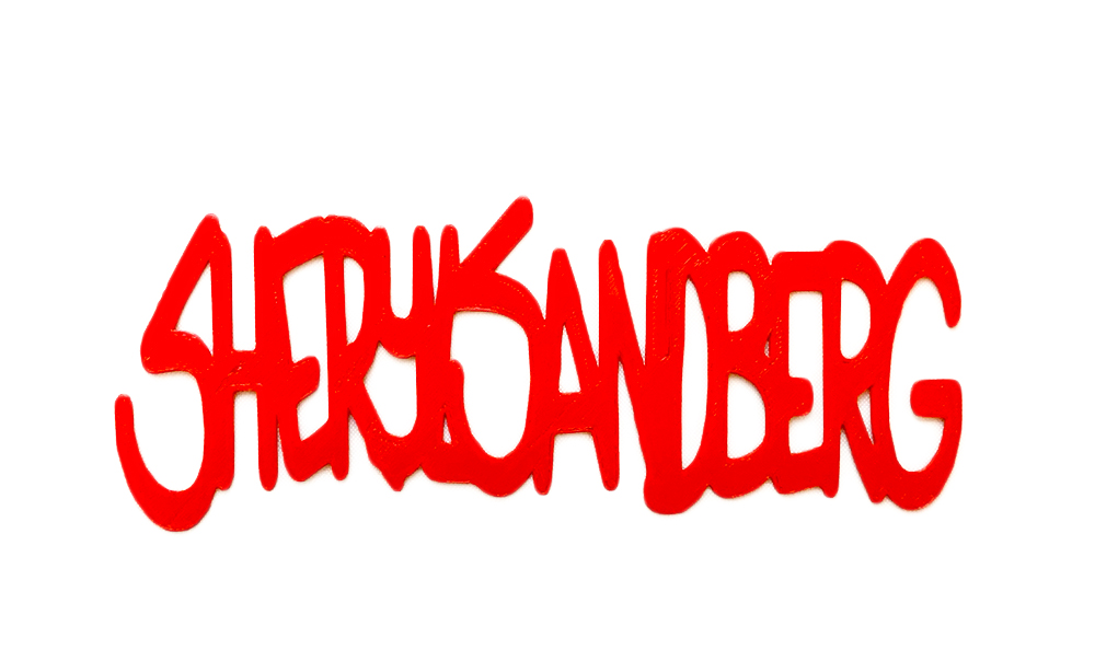 sherylSandbergNoBackground.jpg