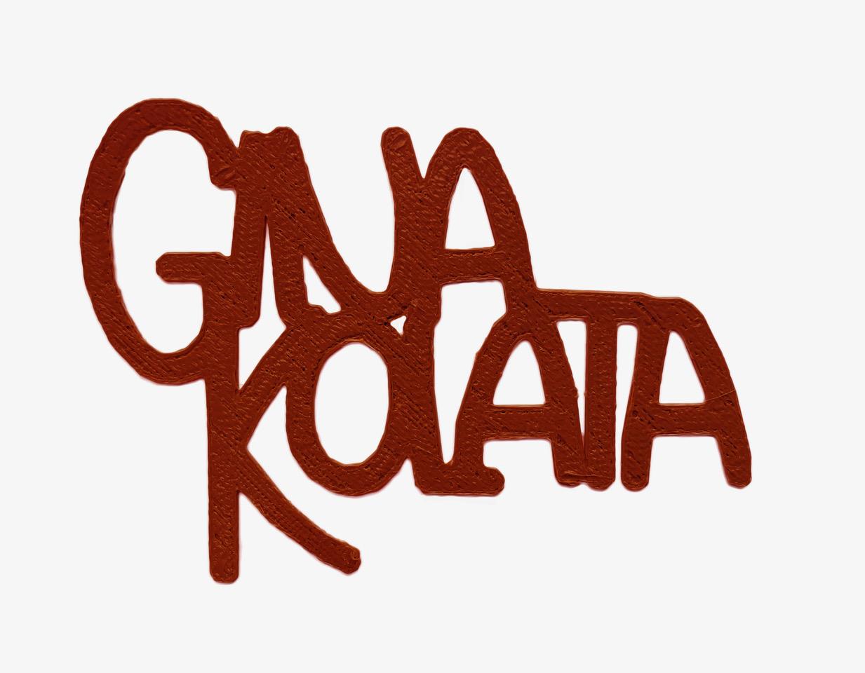 Gina Kolata.jpeg