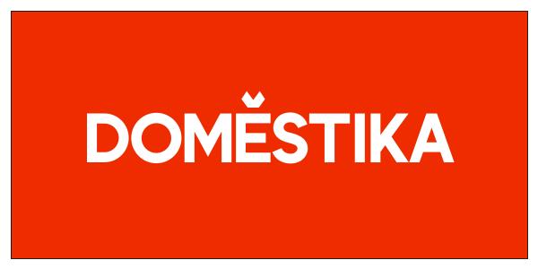 l-domestika.png