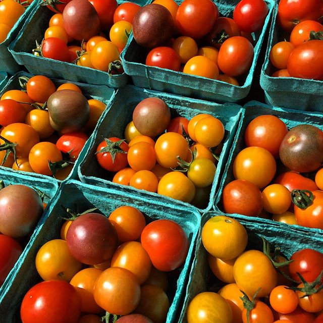 These little ones are rolling now! Sending these to @naturalprovisions and @duinoduende #tasteofsummer #tomatoes