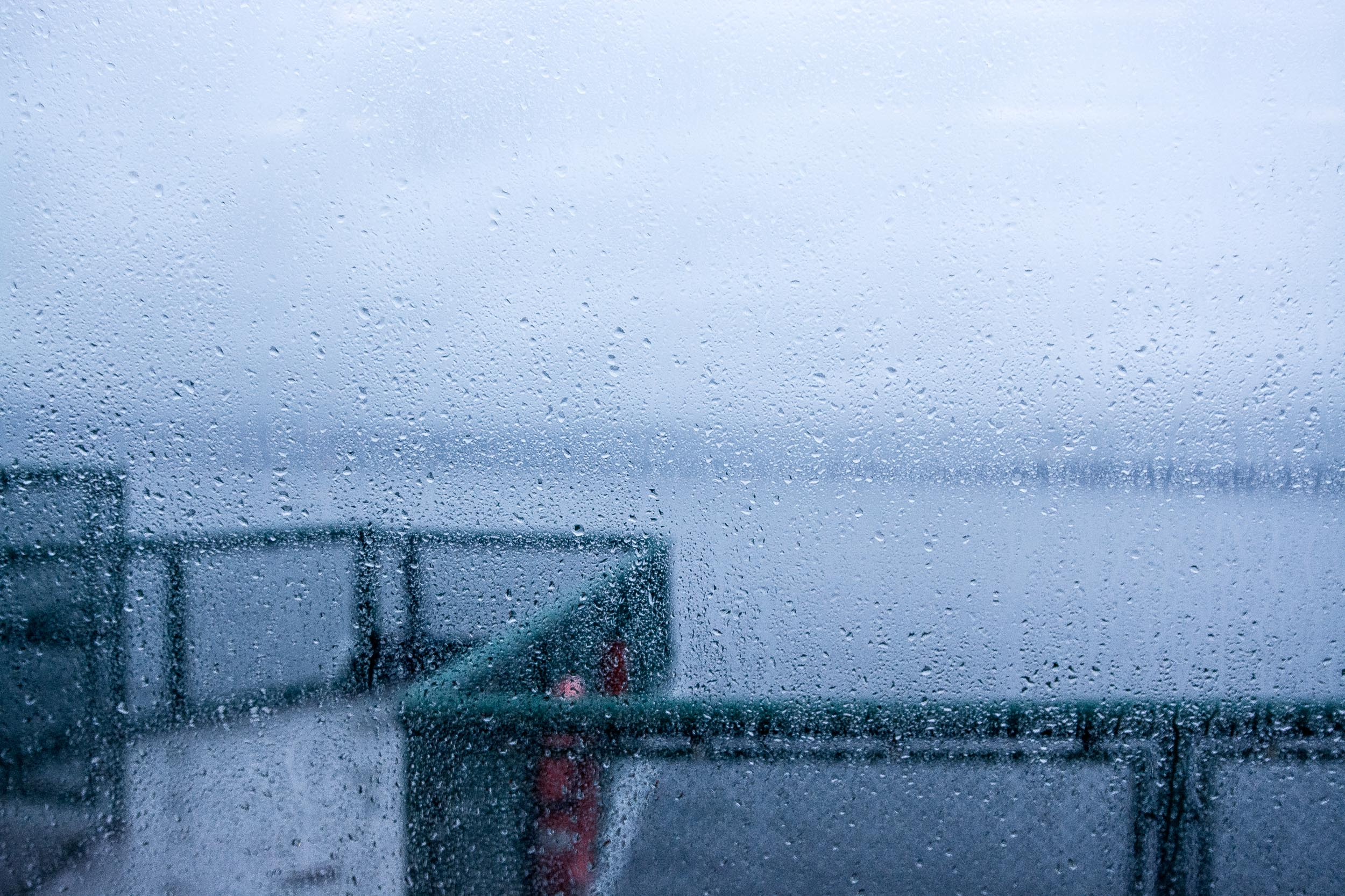 What if it rains? - We live in the Pacific Northwest and the weather is always a bit unpredictable. If the weather doesn't cooperate we will reschedule.