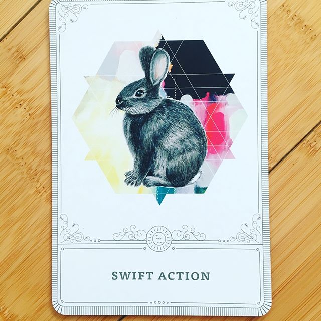 """This was the card I drew at the start of a yoga class the other day and I ❤️ it. Swift Action fits this moment in my life perfectly and what I want this time to feel like. We are trying to take swift action pertaining to our habits, because the issue of plastic pollution and the need to refuse plastic consumption feels urgent to us. 💫 What feels urgent to you?  What in your life could use a little Swift Action? 💫 I'm also reminded of a quote I love: """"very few decisions in life require extensive deliberation."""" So how 'bout some swift action  I'm reminded in this moment in my life that when we are listening to our highest selves, following intuition, swift action comes naturally."""