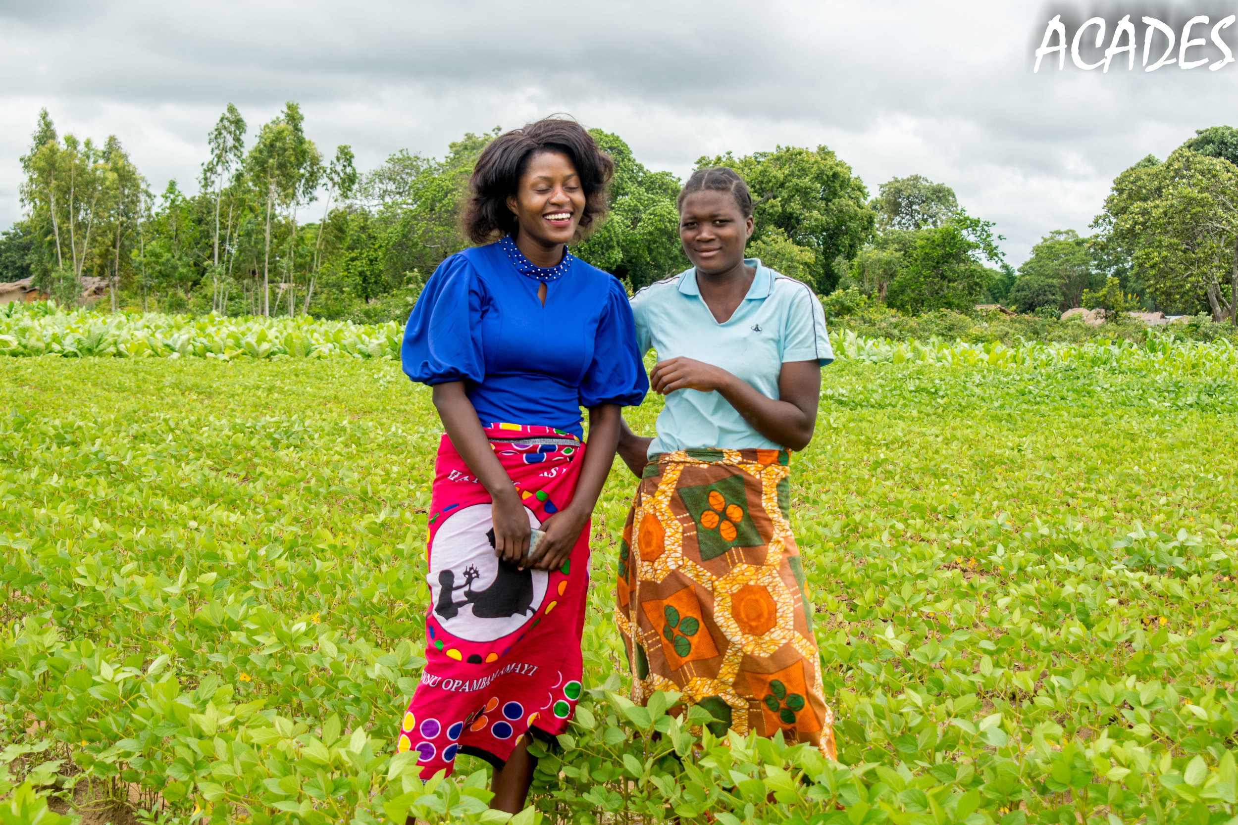 Sustainable Markets and Incomes for Youth Farmers.jpg