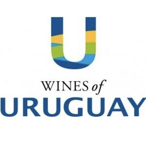 300wines-of-uruguay.jpg