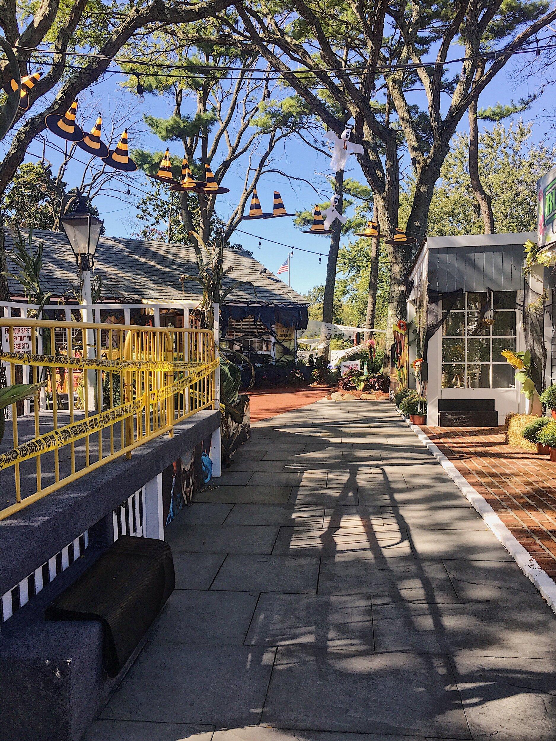 Walking down the Main Street of Milleridge Village