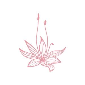 Plantain →