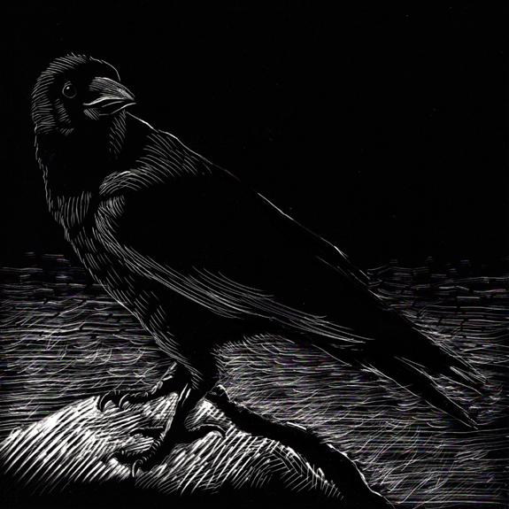 kurt brugel scratchboard book illustrator Crow 04.jpg