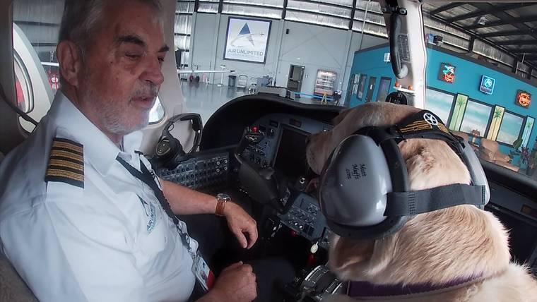 Bria, the Lab co-pilot