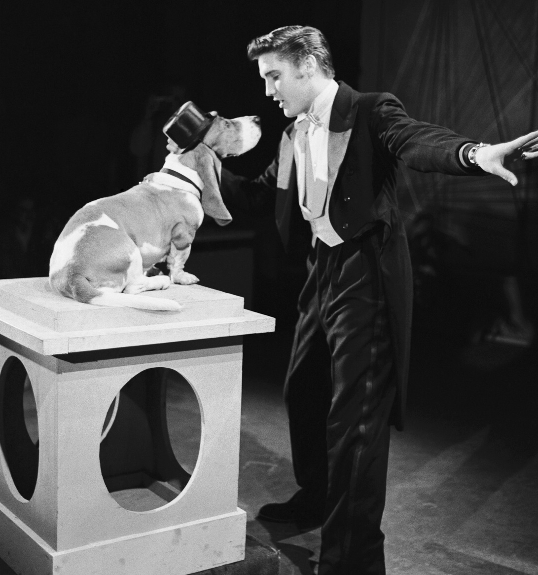 Elvis sings Hound Dog (Steve Allen Show '56)