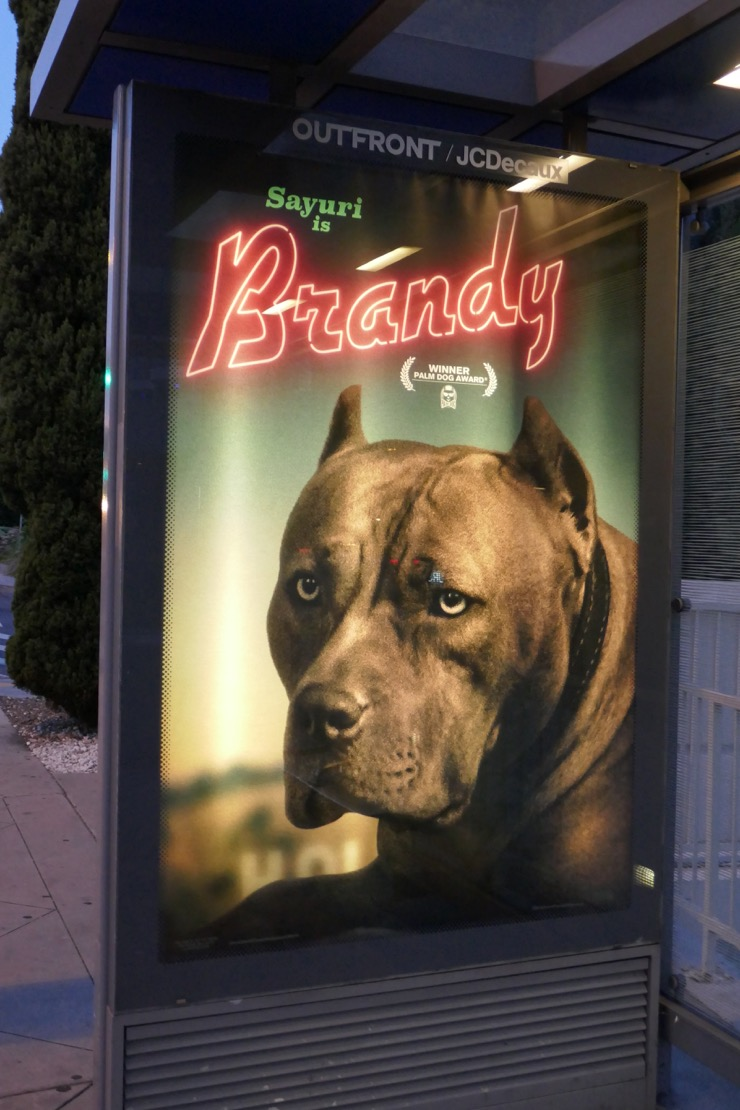 Brad Pitt tasted Brandy's Good Food for Mean Dogs