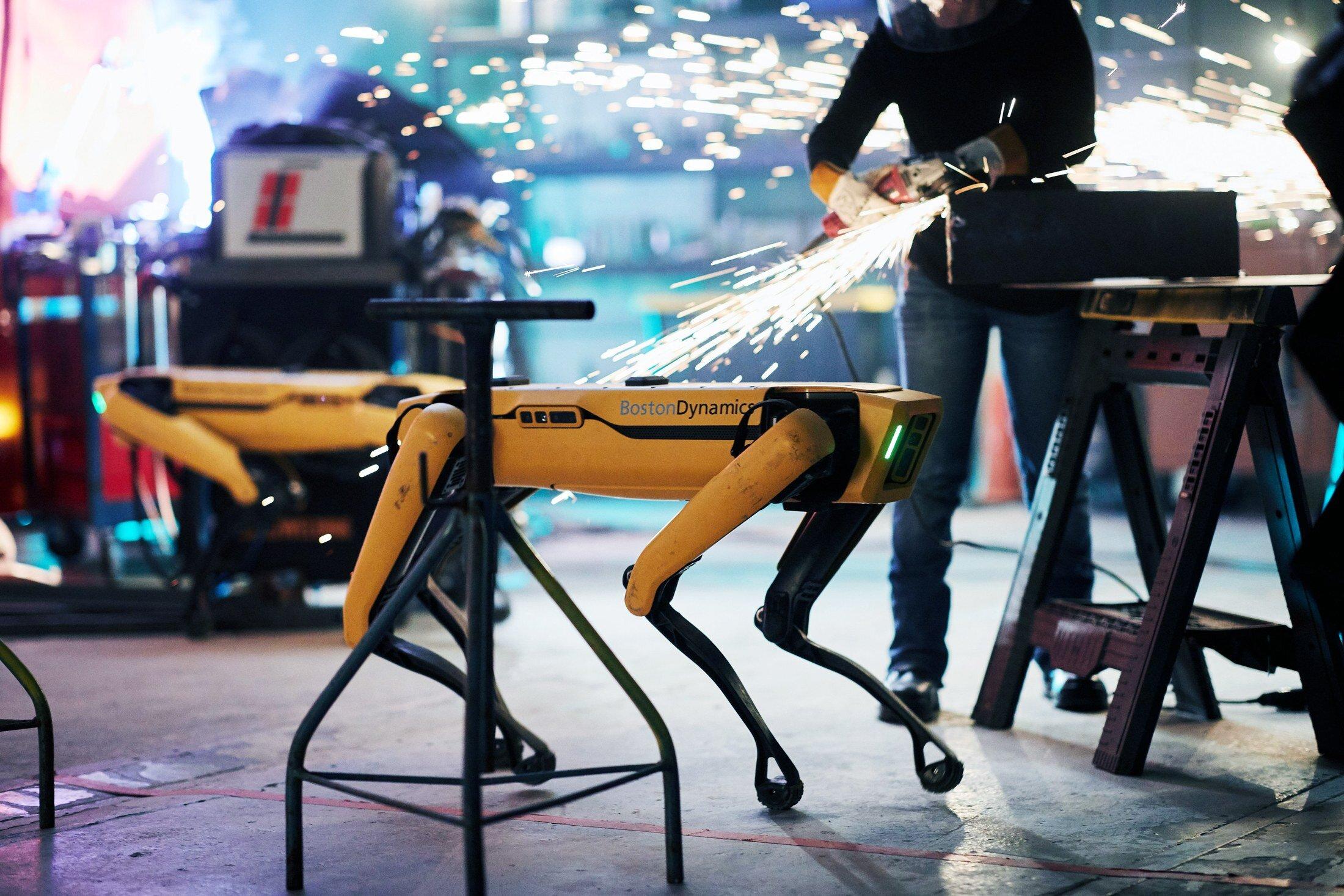 A robot dog is born!