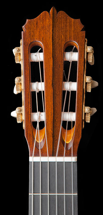 Headstock detail showing two tone Madagascar rosewood headplate