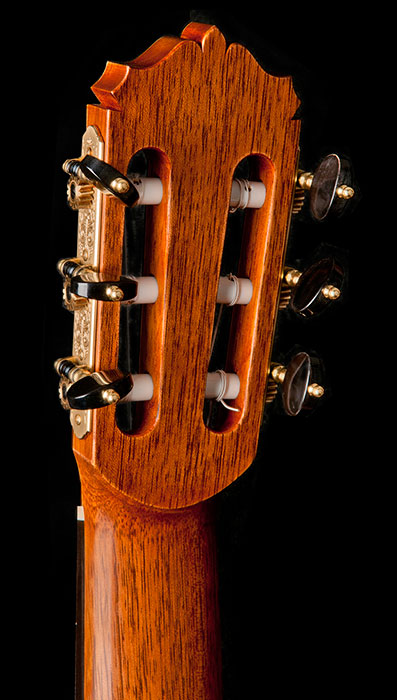 headstock detail showing Rodgers tuners